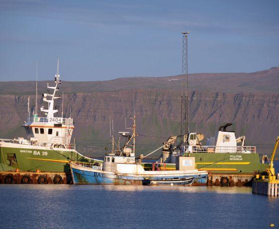 DSC_5545-zachodnia-islandia_1-560x460 ISLANDIA